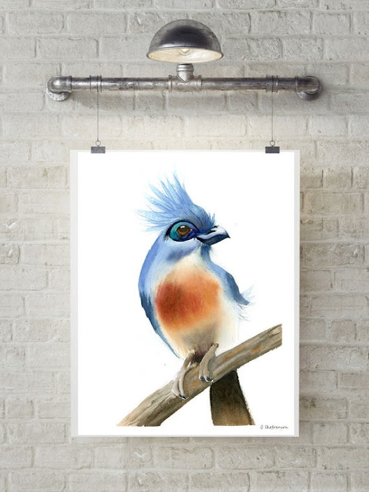 Tropical Bird art Original Watercolor painting wall decor blue orange art Watercolour art bird artwork gift Crested coua Wild Exotic Bird