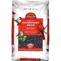 Black Oil Sunflower Seed Wild Bird Food, 50lb