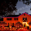 Professional Halloween Lighting and Decorating - Decorating Elves