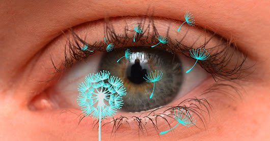 Allergies affect not only your nose, but also your eyes. How to deal with eye allergies.