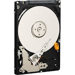 WD - Mainstream 1TB Internal SATA Hard Drive for Laptops