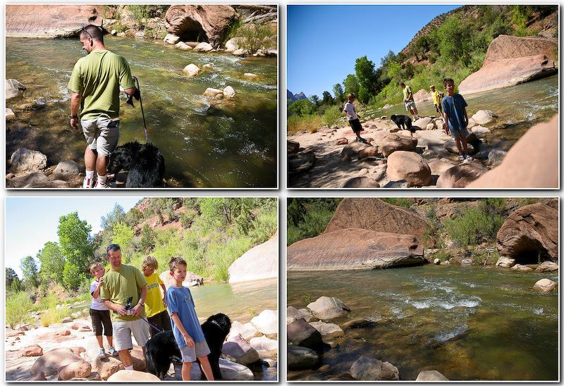 zion virgin river