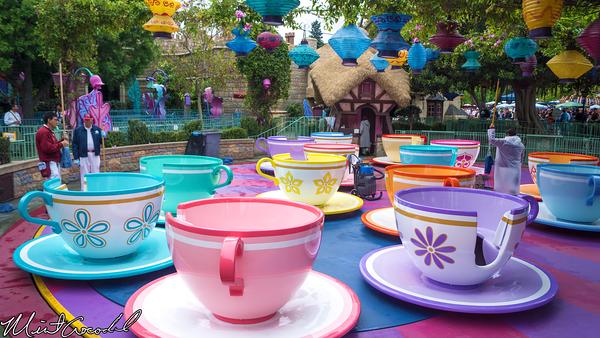 Disneyland Resort, Disneyland, Tea, Cup, Rain, Clean, Custodial, Close, Closed