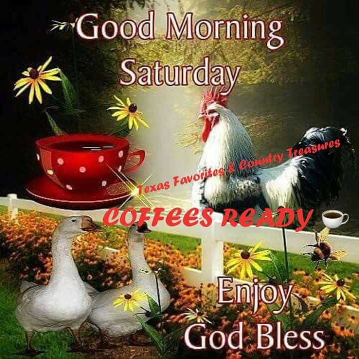 Good Morning Saturday Enjoy God Bless Pictures Photos And Images