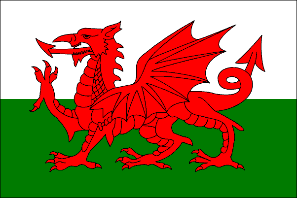 http://eardstapa.files.wordpress.com/2008/10/welsh-flag.jpeg