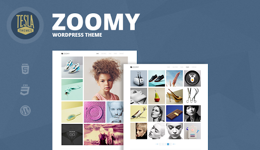 Freebie: Zoomy Premium WordPress Theme