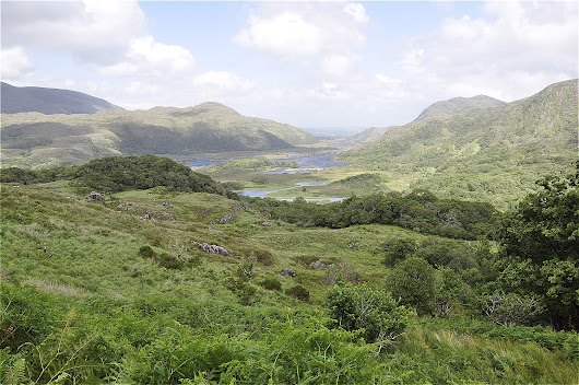 Killarney National Park - Cartographics - Cartograaf voor al uw cartografie