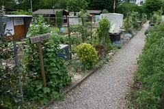 basel garden 027