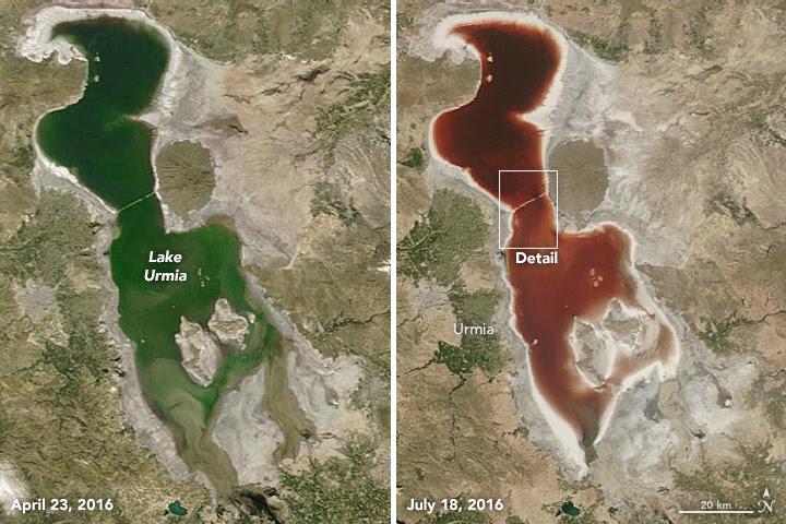 iran rouge sang lac Ourmia, lac Ourmia sang rouge, l'eau du lac Ourmia rouge, l'eau rouge lac iran, iran sang du lac rouge, lac en iran tourne vidéo rouge, iran lac Ourmia globules rouges photos
