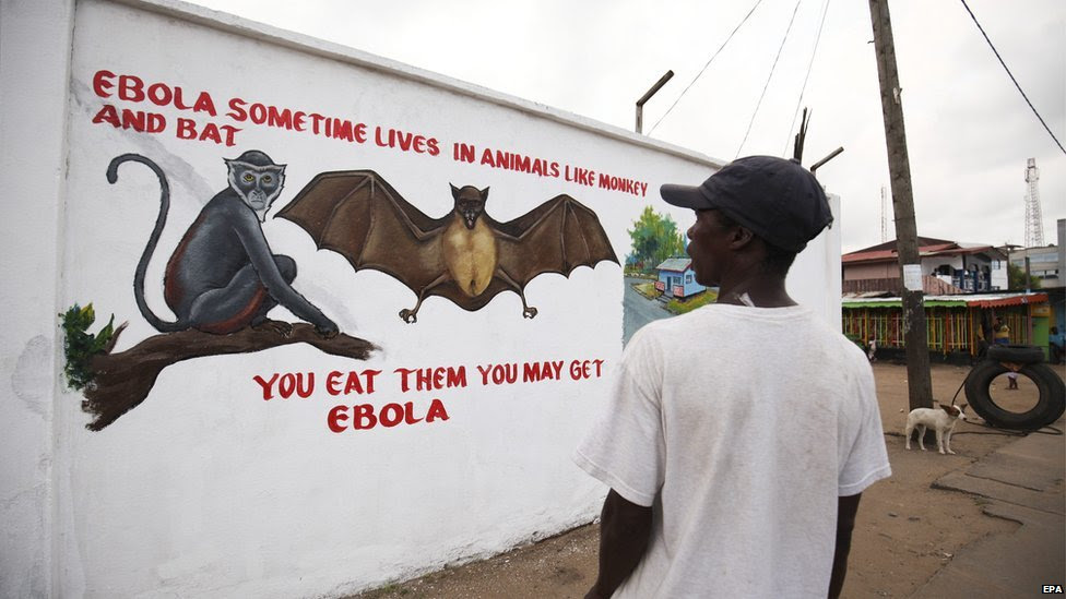 A Liberian man looks at a painting of the Ebola virus carriers part of an Ebola sensitization campaign painted on a wall in downtown Monrovia, Liberia 19 November 2014