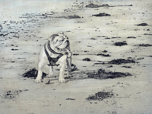 Bulldog At The Beach by Angela Boyko