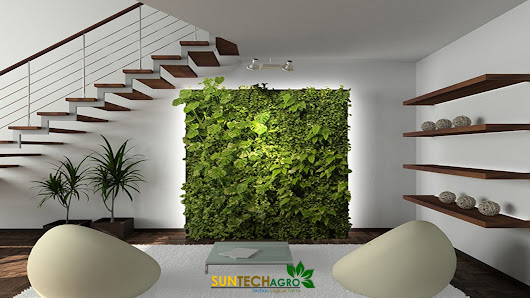 Ultimate Guide to Living Green Walls Work | Air-Grow