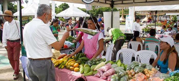 Mercado agroecológico con productos frescos y a precios justos