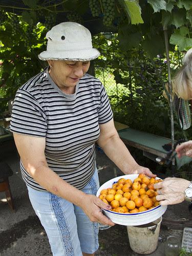 Strangers in Ukraine - apriconts