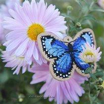 Запоздавшая бабочка