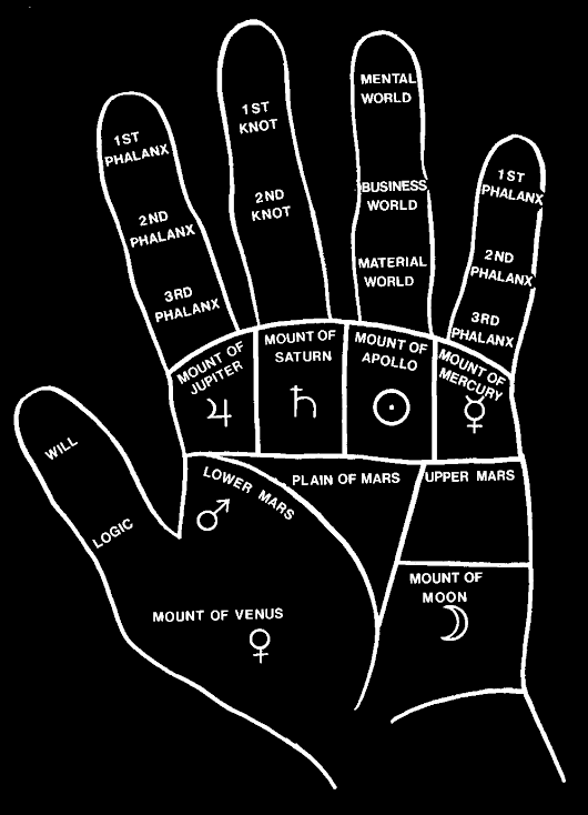 The Future of Hands Books - Mark Seltman's Real Palmistry Blog