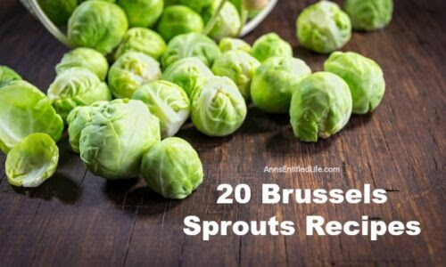 20 Brussels Sprouts Recipes