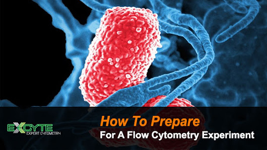 How To Prepare For A Flow Cytometry Experiment | Expert Cytometry | Flow Cytometry Training