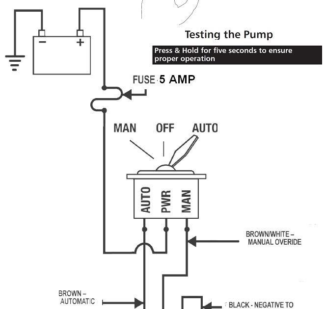 31 Bilge Pump Wiring Diagram