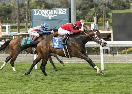 River Boyne Makes It Three Straight In $200,000 Pasadena | Thoroughbred Racing Dudes