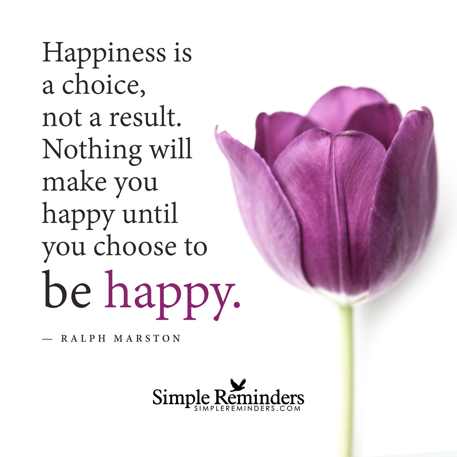 Quotes About Happiness Choices 36 Quotes