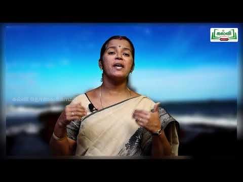 10th Tamil Tirukkural பெரியாரைத் துணைக்கோடல் Kalvi TV