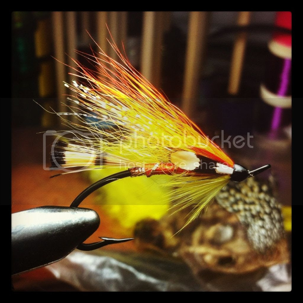 Guy's Shrimp is an original pattern tied for fishing for Atlantic Salmon, Salmo Salar in New Brunswick Canada on the Miramichi river system