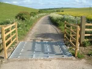 牛路坑設施可有效阻止牛隻衝出馬路。(漁護署圖片)