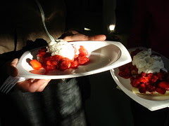 strawberry shortcake plates, small and large