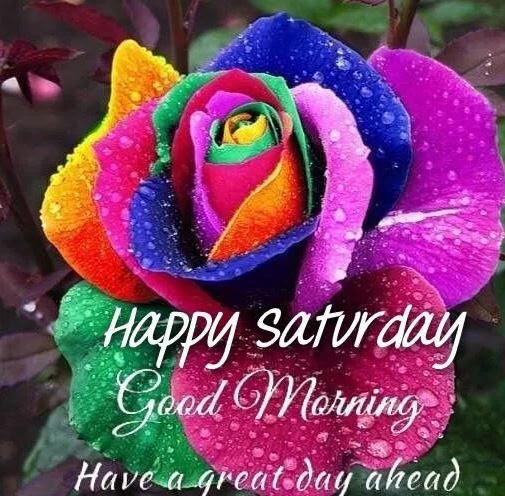 Good Morning Saturday Images With Gud Morning Saturday Wishes