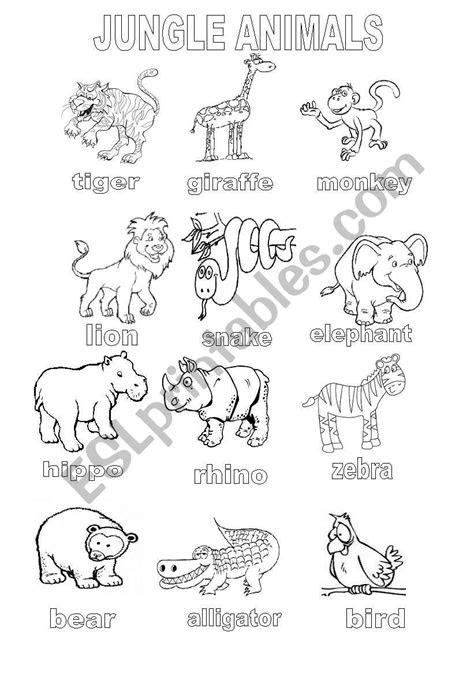 english worksheets jungle animals coloring sheet