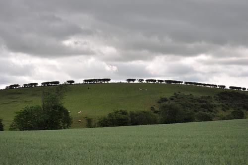 sco_westordhill