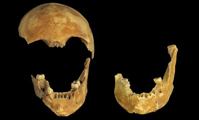 8,500-year-old skulls found in well.