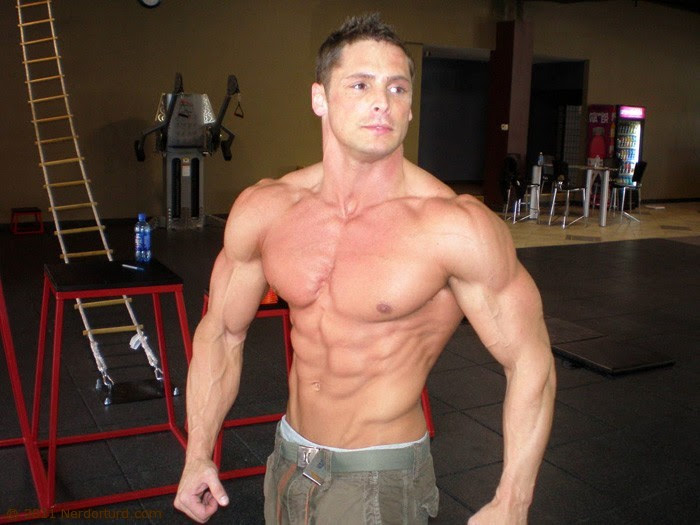 body fat percentage male bodybuilding
