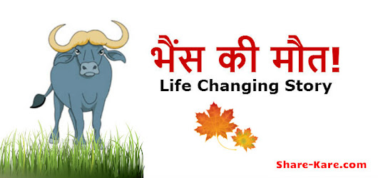 भैंस की मौत! | Buffalo's death | Life Changing Story - Share-Kare