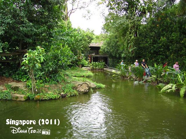 Day 3 Singapore - Zoo Singapore 08