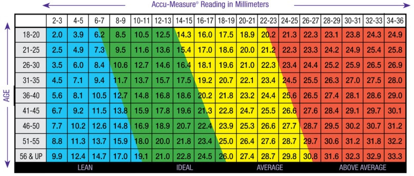 body fat percentage calculator based on measurements