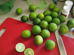 key limes for key limeade