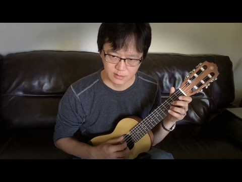 Nothing Else Matters cover with the Guitalele