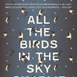 .Kindred Dreamheart.: [Review]:  All the Birds in the Sky by Charlie Jane Anders