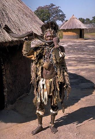 zimbabwe kudu