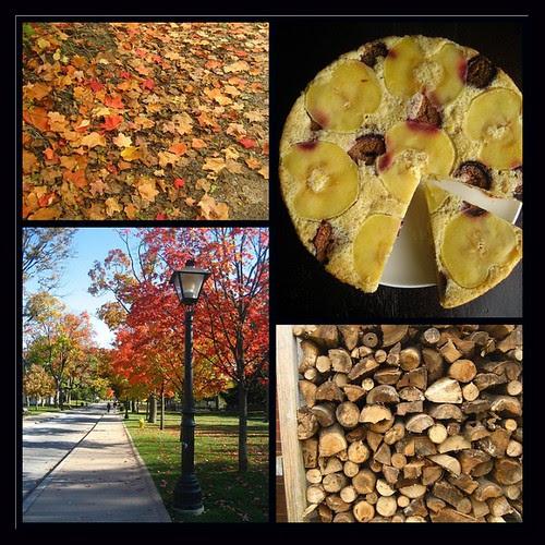 fall's favorite