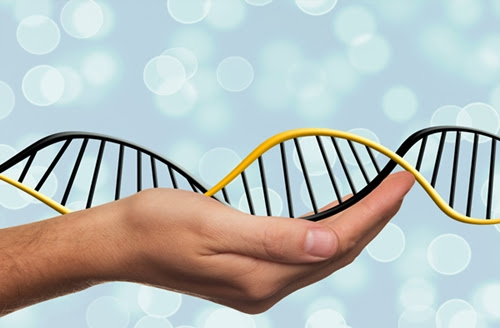 Start-Up Building Mobile Apps Combining DNA, Lifestyle | Science and Enterprise