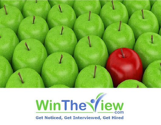 WinTheView.com Teams With Michelle Dumas of Distinctive Career Services to offer Innovative Career Tools to Career Professionals