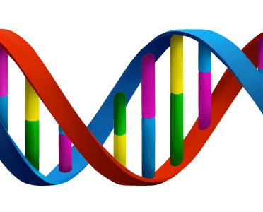 Impronta génica