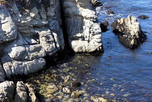 Point Lobos Cove by Ed Bierman