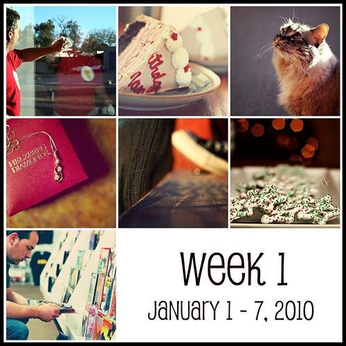 Week 1 (365:2010)