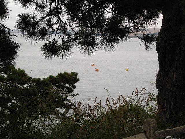 bay kayakers