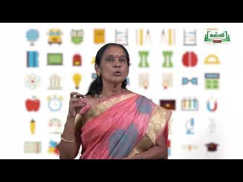 8th Science Bridge course நம்மைச் சுற்றியுள்ளப் பொருட்கள்  அலகு 3  Kalvi TV
