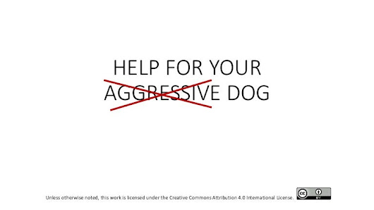 HELP For Your Aggressive Dog